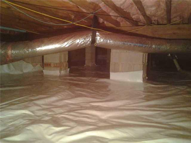 Mold Remediation and Insulation Replacement in Catawba, SC