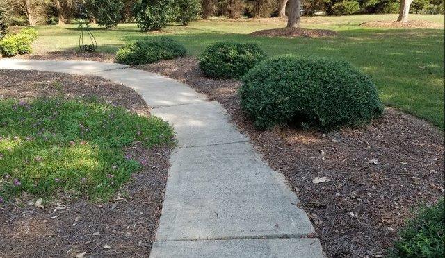 Un-leveled Walkway  in Matthews, North Carolina