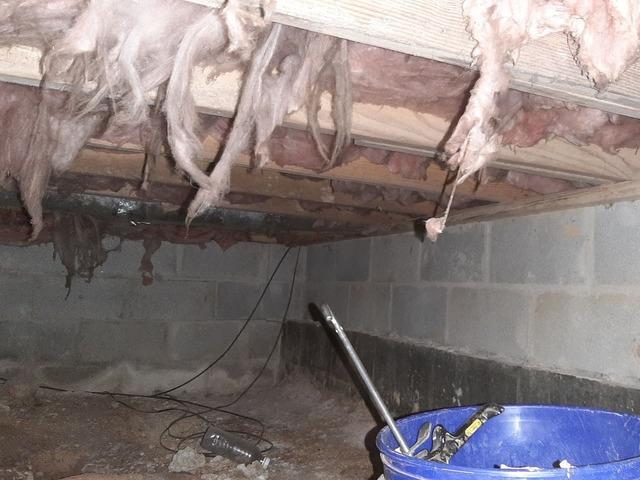 Crawlspace waterproofing in Lebanon, KY.