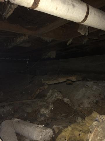 Crawlspace Encapsulation in Coram NY