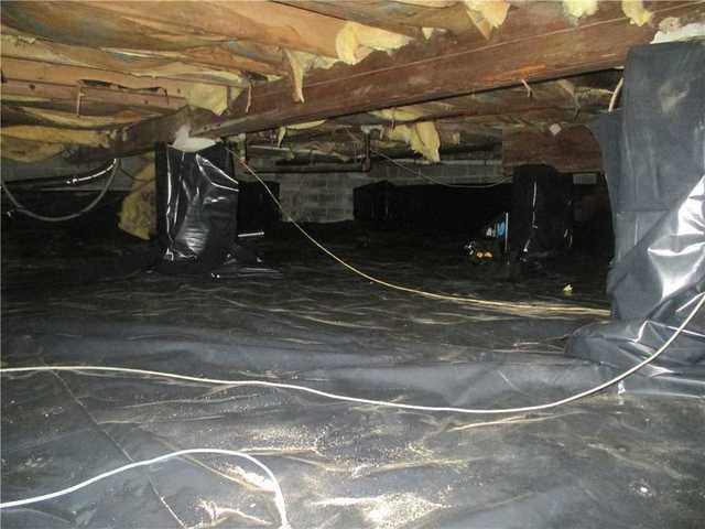 Insulation Repair in Shirley