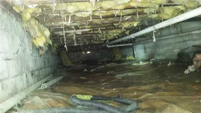 Crawlspace Insulation in Bayport