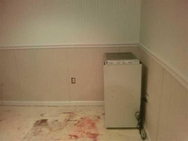 Mold and Mildew on Inside Walls Replaced in Lake Ronkonkoma