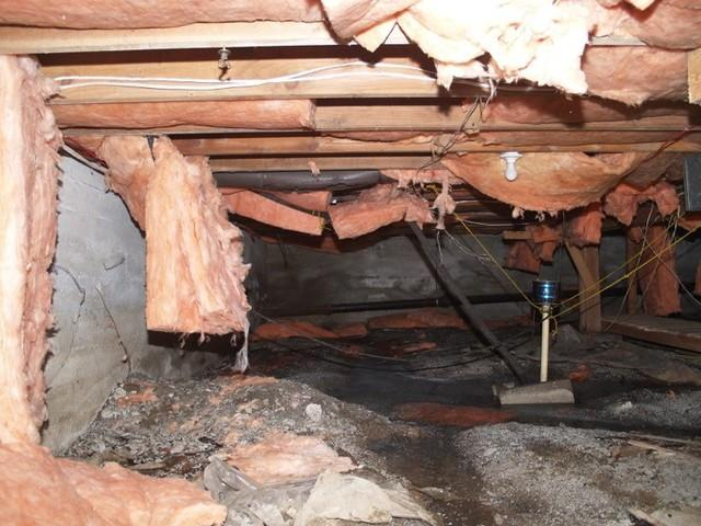 Crawl Space Encapsulation in Nanaimo, BC - Before Photo