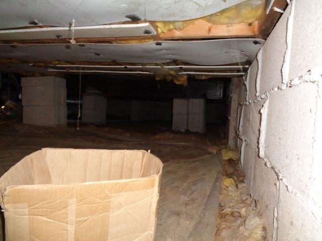 Crawl Space Insulated and Sealed - Before Photo