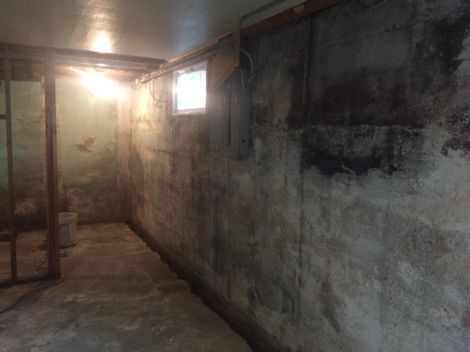 Bright Wall Panels Transform Government Camp, OR Basement - Before Photo