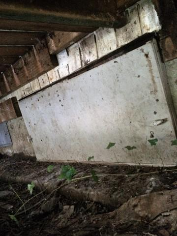 Humid Environment Growing Plants in Crawlspace - Welches, OR