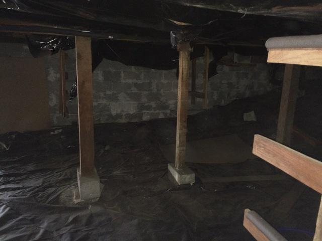 Tall Crawlspace in Florence Oregon gets New Posts