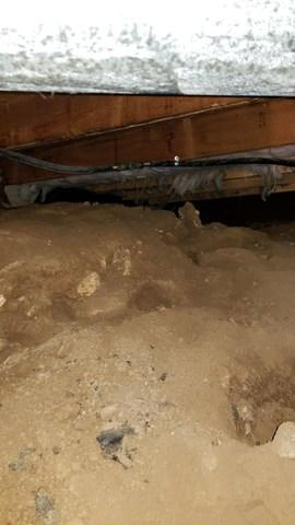 Mosier, Oregon Crawl Space Gets Transformed
