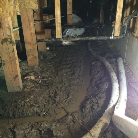 Wet Crawlspace in McMinniville, Oregon