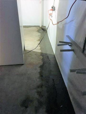 Cleanspace Wall in Stayton, OR Basement - After Photo