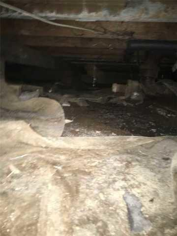 Wet Crawlspace in Vancouver