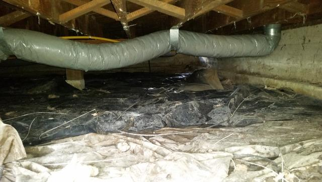 Dirty crawlspace in Sherwood Oregon