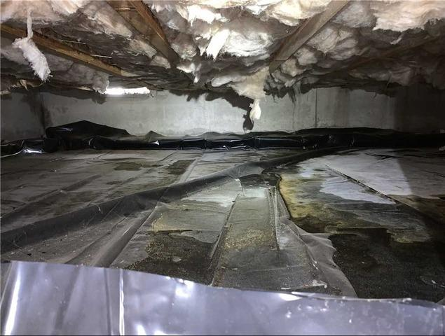 Crawl Space Encapsulation with Spray Foam in Albany, OR