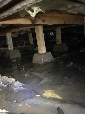 Wet crawlspace cleanup in Eugene Oregon - Before Photo