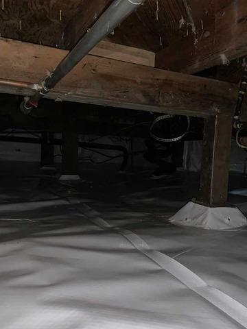 Wet crawlspace cleanup in Eugene Oregon