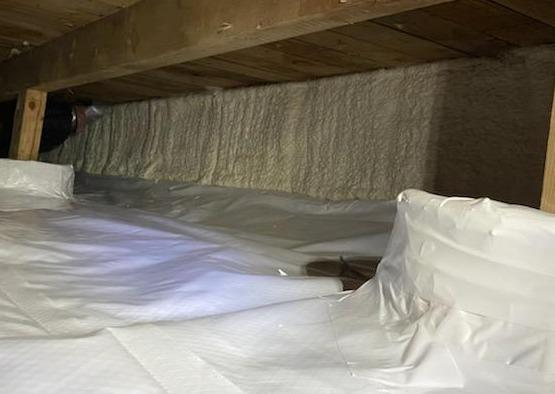 Critter Evidence Litters the Crawlspace in Camp Sherman, OR