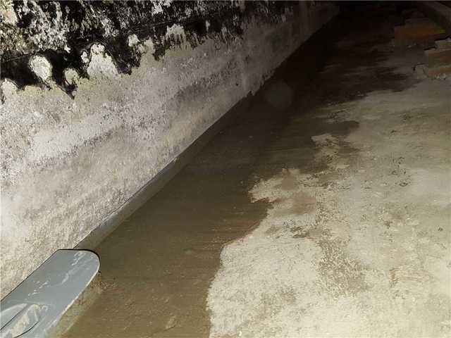 Waterproofing a basement before finishing it in Anjou!