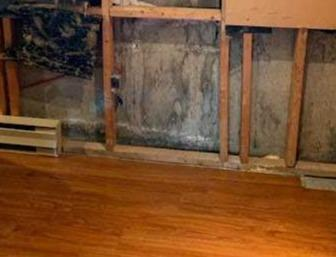 Black mold problem in Saint-Basile-le-Grand, Qc
