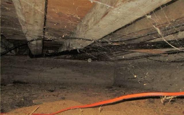 Insulate a crawl space in 3 steps in Ham-Nord, Qc