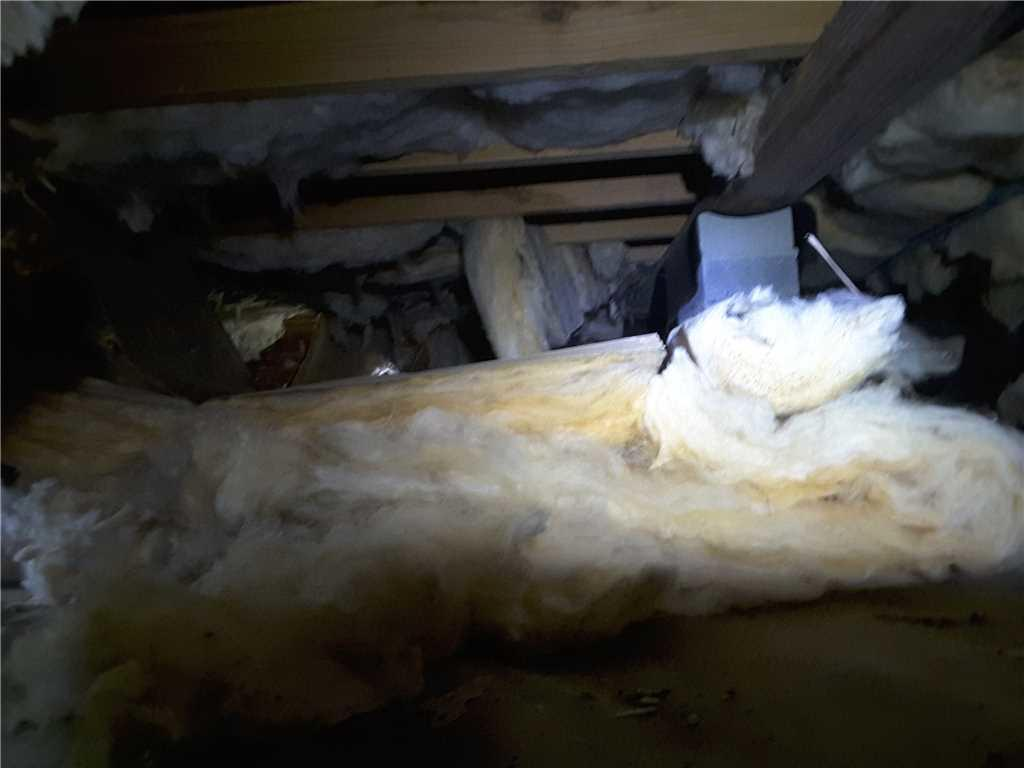 Moldy, Rotting Crawl Space Transformed in Goose Creek, SC - Before Photo