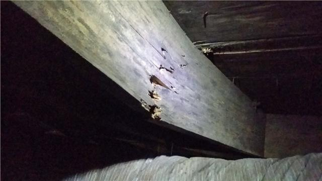 Flooring Problems in Savannah, GA