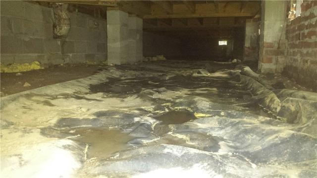Moldy Wet Basement Encapsulated in Walterboro, SC