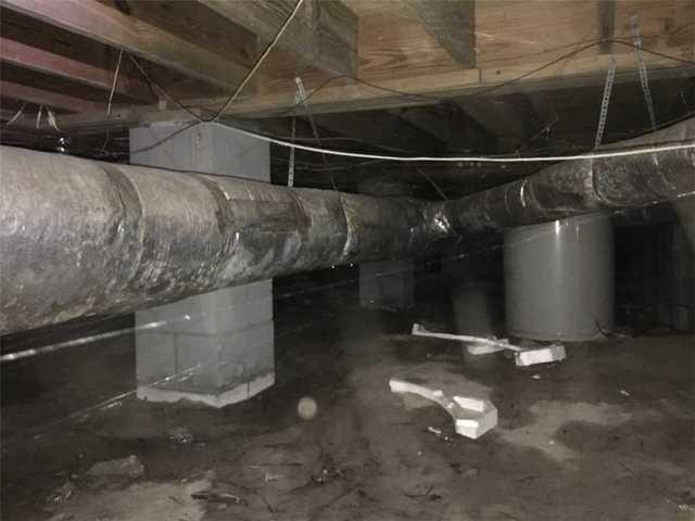 Crawl Space Transformation in Statesboro, GA
