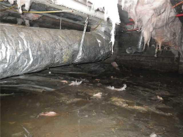 Crawl Space Repair in Okatie