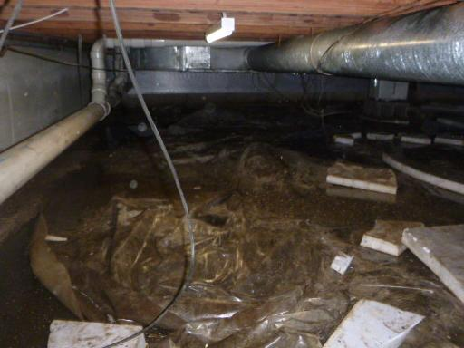 Wet Culver, Indiana Crawlspace - Before Photo