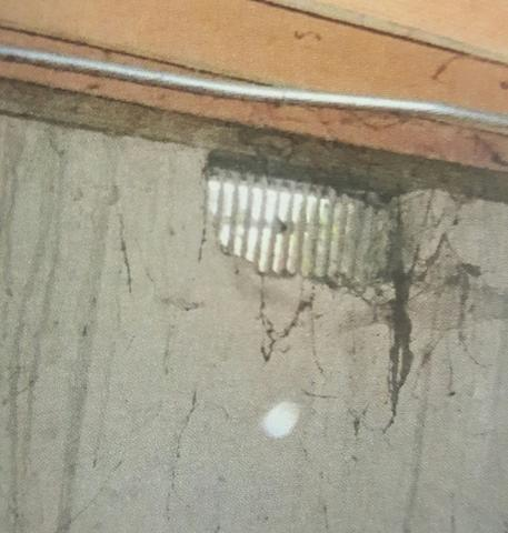 Crawlspace Mold in Crown Point, IN