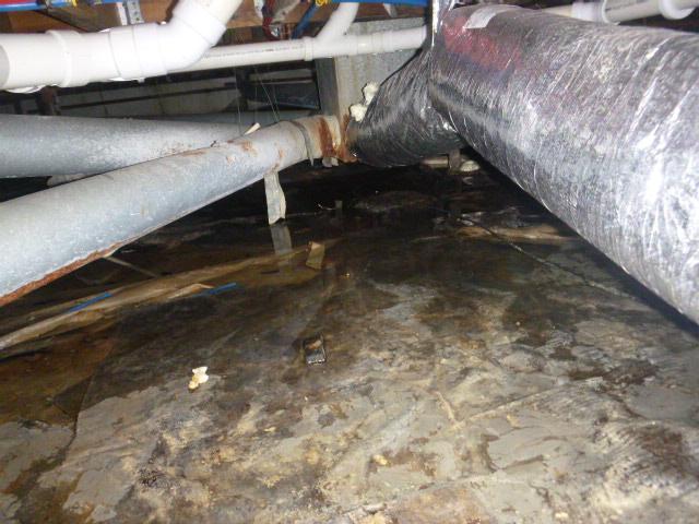 Wet Valparaiso Crawlspace