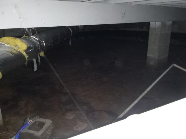Transformation in Griffith Crawlspace