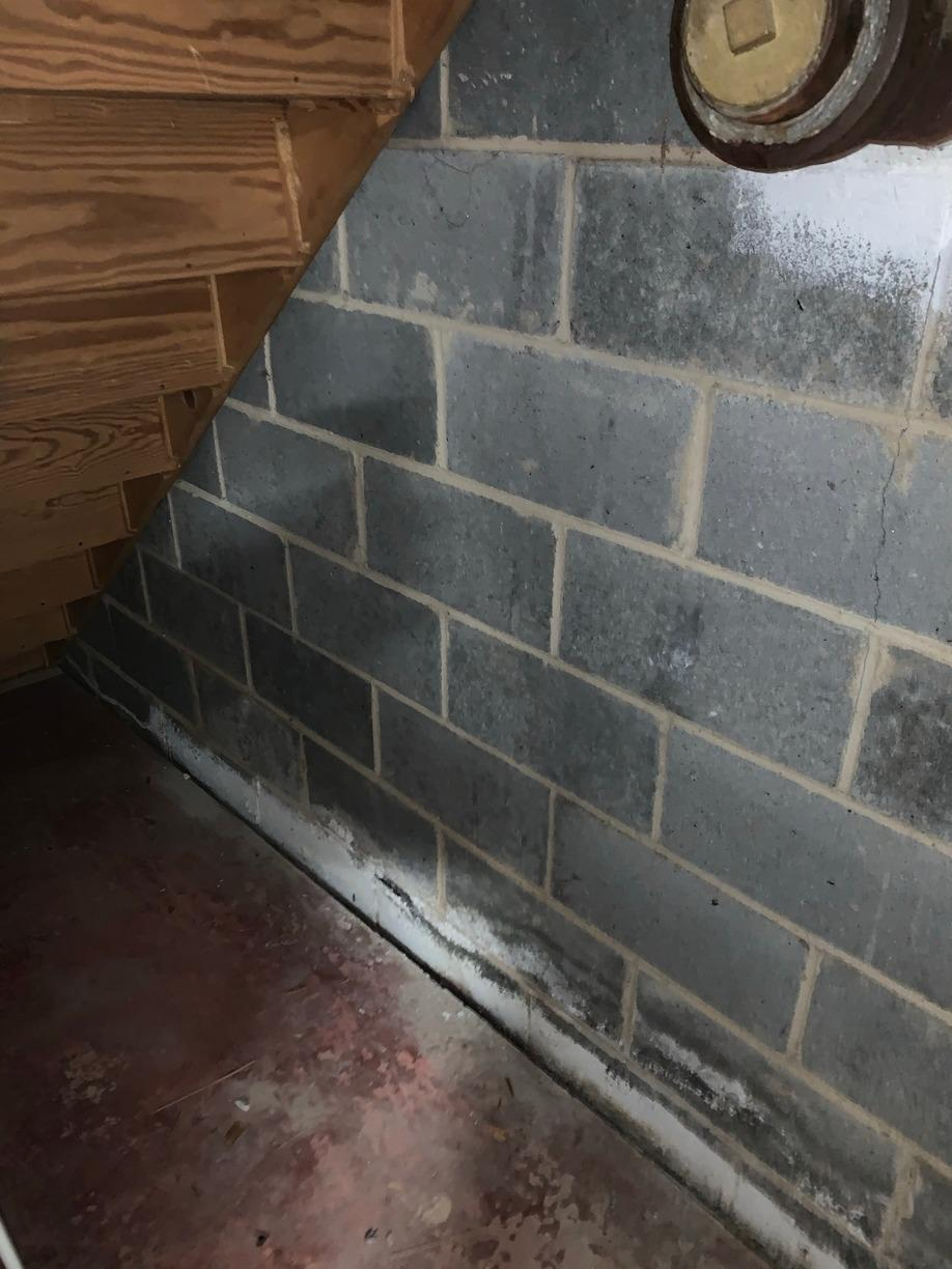 Moisture Barrier Installed In Princeton, NJ - Before Photo