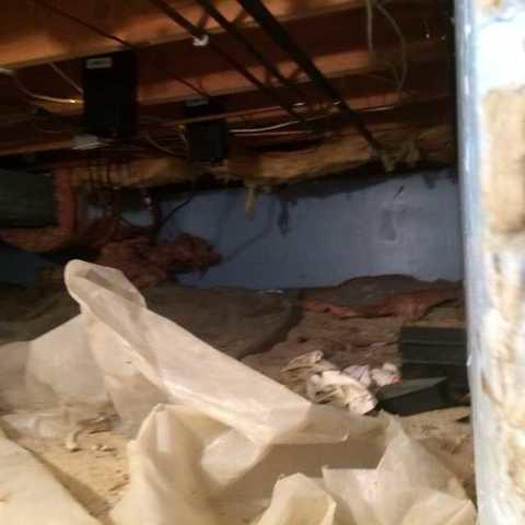 Clean Crawl Space in Medford, NJ