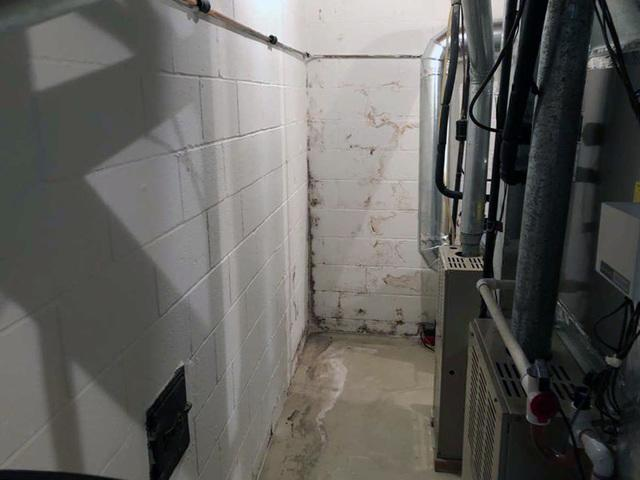 Triple Safe Sump Pump & Clean Space Walling Installed In Chester, NJ