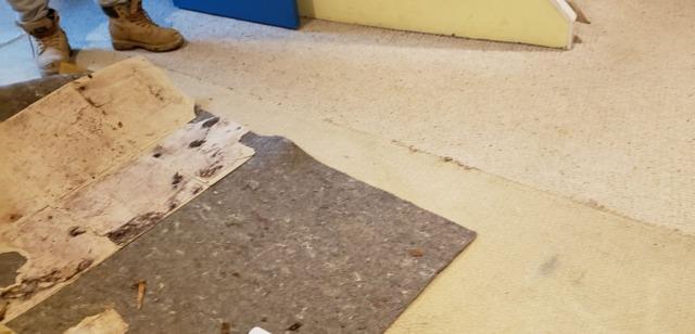 Waterproof Flooring Installed in New Providence Basement