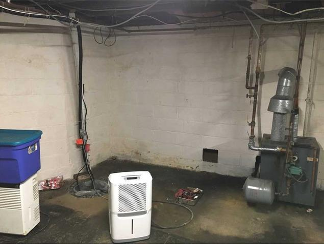 TripleSafe Sump and SaniDry in Red Bank, NJ