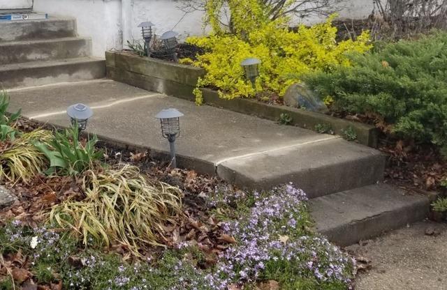 Concrete Walkway Leveled in Woodstown, NJ
