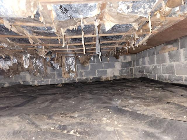 Crawl Space Encapsulation in Palmyra, NJ