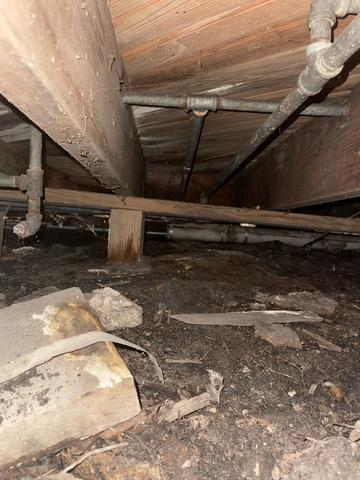 Damp Crawl Space Solution in Wall, NJ