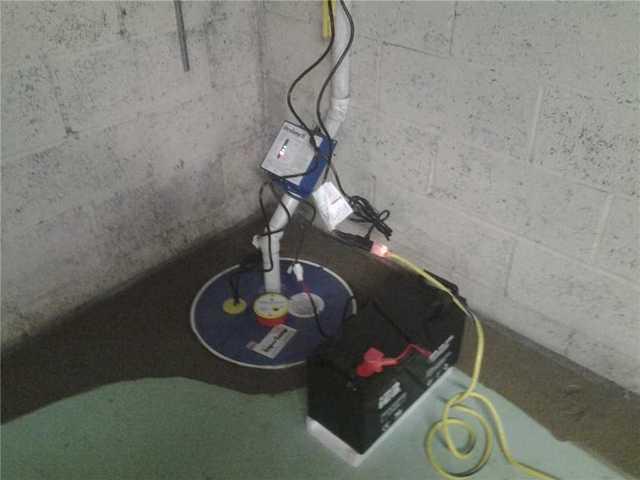 Mold Prevention in Little Falls, NJ