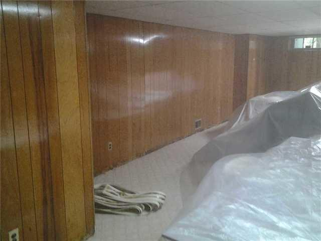 Wet Basement Causes Mold in Haworth