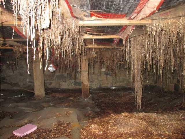Crawl Space Repair Keeps the Ghosts Out in Morristown
