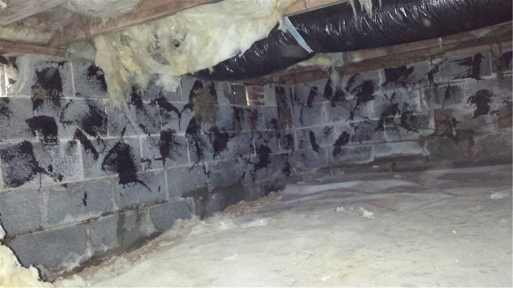 Cinder Block Crawl Space Fixed in Durham, NC - Before Photo