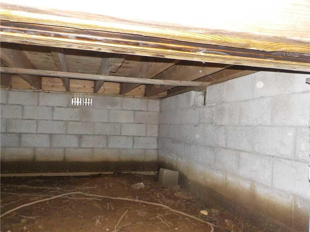 CleanSpace Restores Moldy Crawl Space in Baldwin, MI - Before Photo