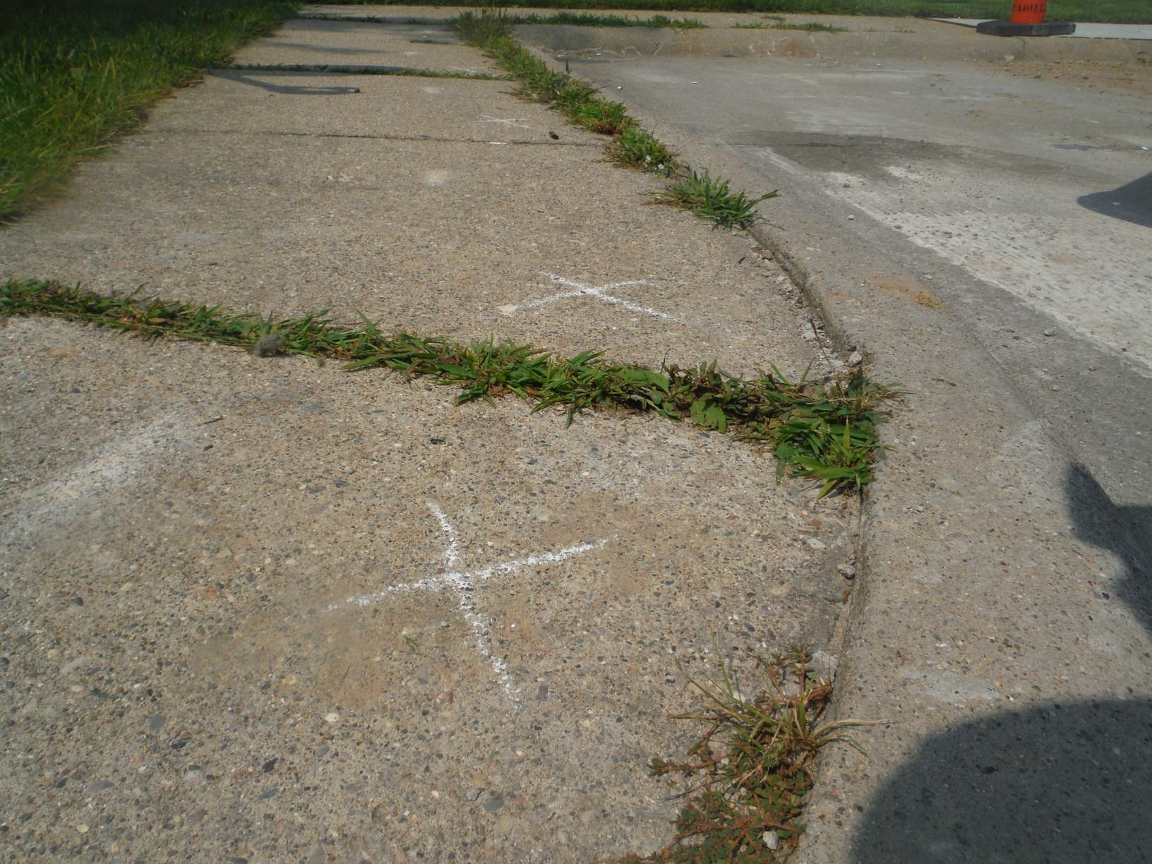 Concrete Slab on Sidewalk Lifted in Macomb, MI - Before Photo