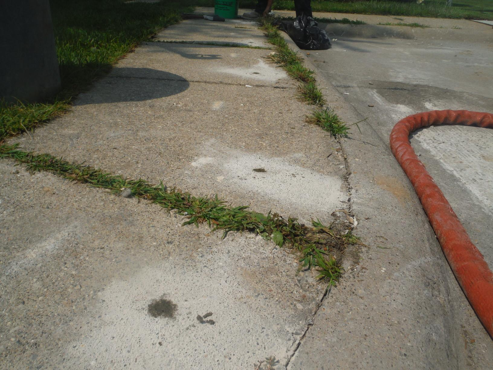 Concrete Slab on Sidewalk Lifted in Macomb, MI - After Photo
