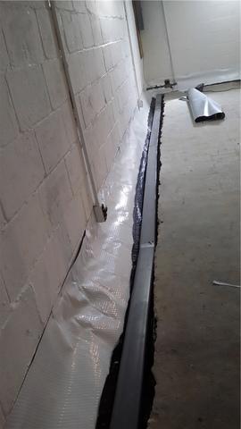 WaterGuard Eliminates Moisture in Greenville, MI Basement
