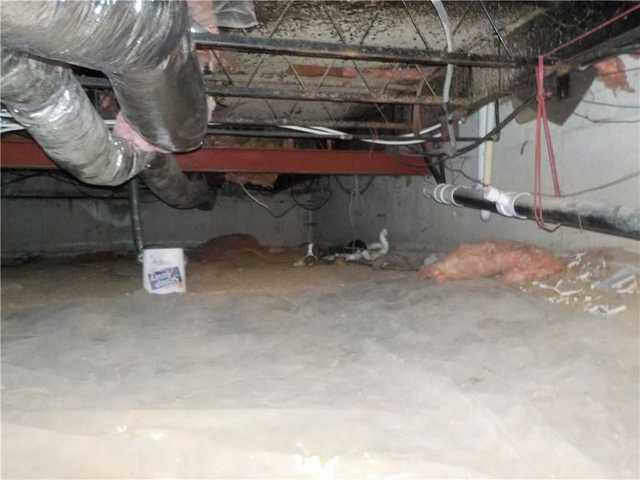 Tradeshow Attendee Chooses to Encapsulate Crawl Space